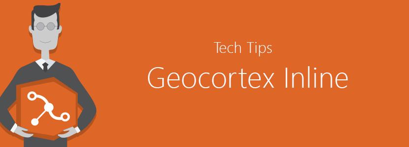 conditional tips geocortex inline